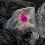 De acuerdo con los datos de Greenpeace para el año 2020 se producirá un 900% más de plásticos que en 1980 y para el final del 2016 ya se habían producido 61 millones de toneladas de plástico sin contar las fibras sintéticas que se usan para la ropa, cuerdas, etc.  Hasta el día de hoy se han producido 8,3 mil millones de toneladas desde el comienzo de su fabricación. Una bolsa de plástico tarda aproximadamente 150 años en degradarse, una botella hasta 500 años y se calcula que para el año 2050 habrá 12,000 millones de toneladas en el medio ambiente.  Fuentes: (2019). Retrieved from https://es.greenpeace.org/es/trabajamos-en/consumismo/plasticos/datos-sobre-la-produccion-de-plasticos/ (2019). Retrieved from https://es.greenpeace.org/es/trabajamos-en/consumismo/plasticos/datos-sobre-la-produccion-de-plasticos/  5 gráficos para entender por qué el plástico es una amenaza para nuestro planeta. (2019). Retrieved from https://www.bbc.com/mundo/noticias-42304901